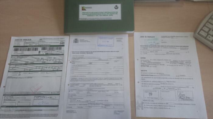 Impresos de Confederación, Minas, Tasas y proyecto de legalización de Sondeo.